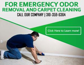 Rug Cleaning - Carpet Cleaning Redondo Beach, CA